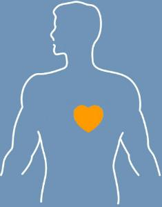 Heart Disease graphic
